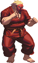 Mr-Karate-Character